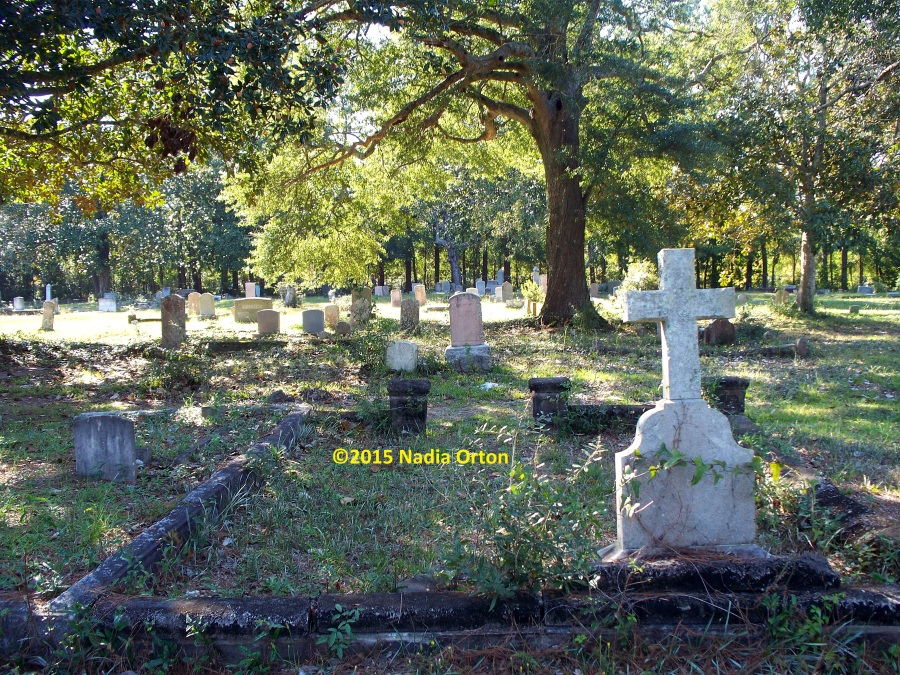 Pine Forest Cemetery COPYRIGHT Nadia Orton